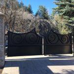 Lions Iron Gate