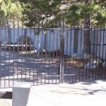 Simplicity Steel Gate
