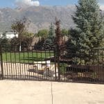 Tapastry Iron Fence with Dog Bar
